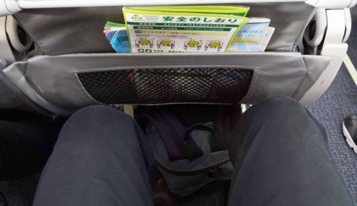 スプリングジャパンの座席に座る様子